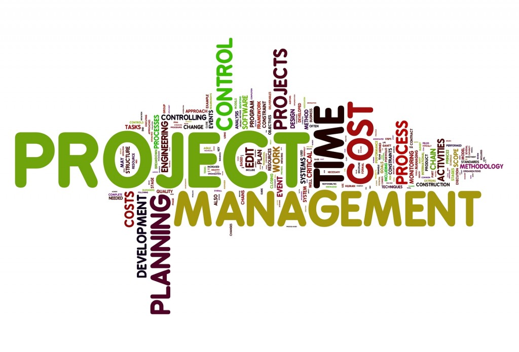 Project Manager (PM) and/or Senior Advisor (SA)